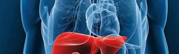 Top 7 Alimentos para Limpiar tu Hígado de Forma Natural